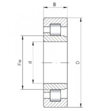 260 mm x 480 mm x 80 mm  ISO NJ252 cylindrical roller bearings